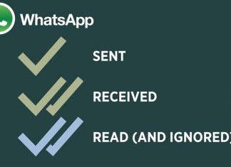 How to Track WhatsApp Messages